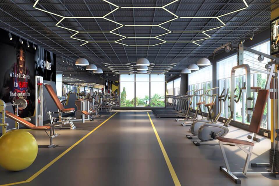 Emerald Isle Gym